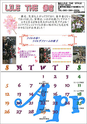 LILE THE 通信4月号