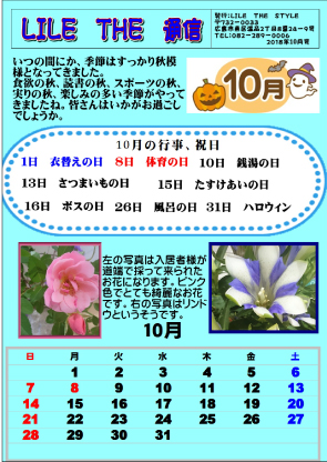 LILE THE 通信10月号